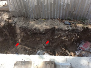Figure 3. Buried archaeological horizon in section around septic tank Pangani February 2018
