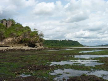 Figure 1: Kikokwe Fort as seen from the intertidal zone. The fort lies at the mouth of the Pangani river on its southern bank. Photo credit Elinaza Mjema.